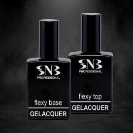 Основи и топове SNB Professional